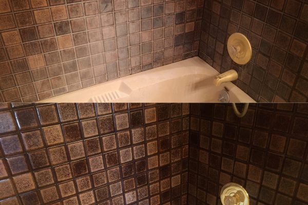 Best shower mould removal service Toronto